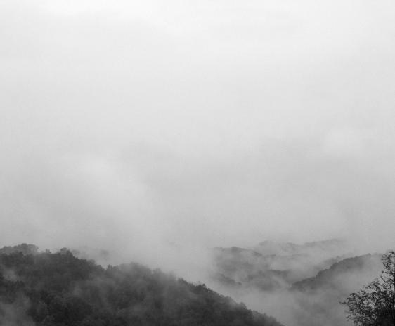 Fog rising from forested mountains, into a cloudy sky.